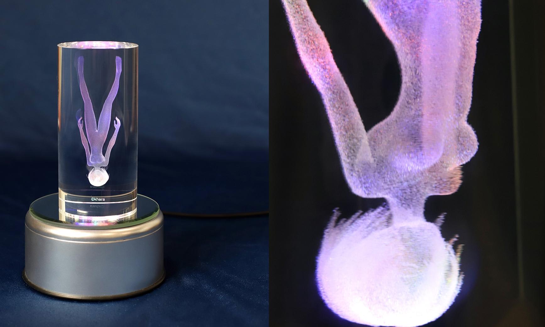 《新世纪福音战士》推出绫波丽纪念水晶