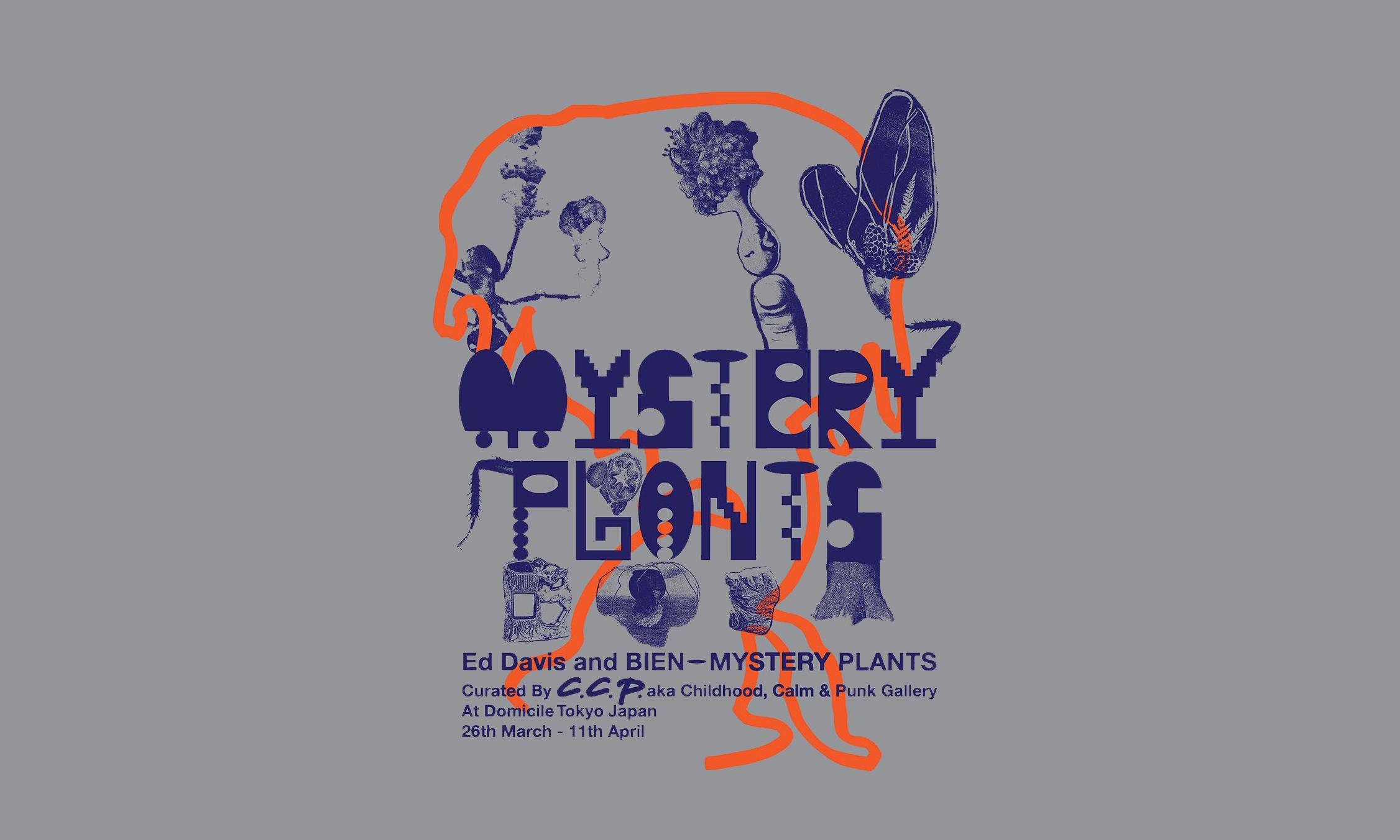 Brain Dead 主理人 Ed Davis 艺术展《MYSTERY PLANTS》即将开催